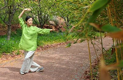Physical Healing with Qigong Exercises - Online Course