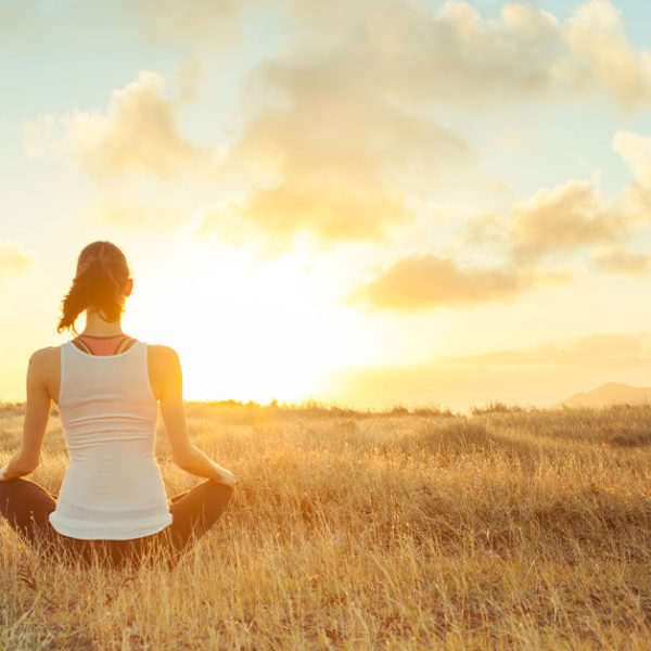 5 Principles of Mago Mindfulness