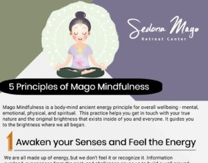 Five Principles of Mago Mindfulness - Infographic